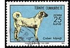 Turkish Ministry of Culture Speaks on Kangal Dogs